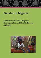 Cover of Nigeria DHS 2013 - Gender in Nigeria booklet (English)