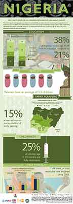 Cover of Nigeria DHS 2013 - 2 Infographics (English)