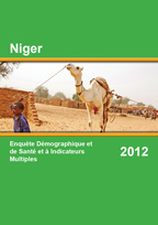 2012 NIger DHS