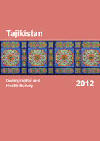 Cover of Tajikistan DHS, 2012 - Final Report (English)