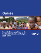 Cover of Guinea DHS, 2012 - Final Report (French)