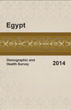 Cover of Egypt DHS, 2014 - Final Report (English)