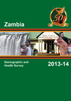 Cover of Zambia DHS, 2013-14 - Final Report (English)