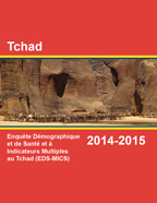 Cover of Chad DHS, 2014-15 - Final Report (French)
