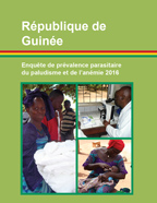 Supplement to Guinea (MICS) (French) - FR332