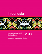 Cover of Indonesia Special, 2017 - Adolescent Reproductive Health Final Report (English)