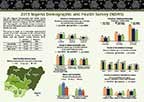 Cover of Nigeria DHS 2013 Fact Sheet (English)
