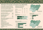 Cover of Nigeria 2003 DHS Fact Sheet (English)