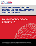 Cover of An Assessment of DHS Maternal Mortality Data and Estimates (English)