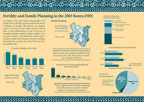 Cover of Kenya 2003 DHS Fertility & Family Planning Fact Sheet (English)