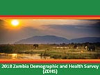 Cover of Zambia DHS, 2018 - Survey Presentations (English)
