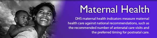 BR_MeasureDHS_Maternal-Health