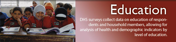 DHS surveys collect data on education of respondents and household members, allowing for analysis of health and demographic indicators by level of education. (Photo credit: © 2006 Basil A. Safi/CCP, Courtesy of Photoshare)